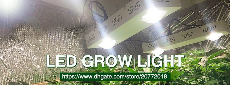 Pdgrow online store sells led grow light,led string light,led aquarium light on DHgate.com, the reliable store with quality service in China.