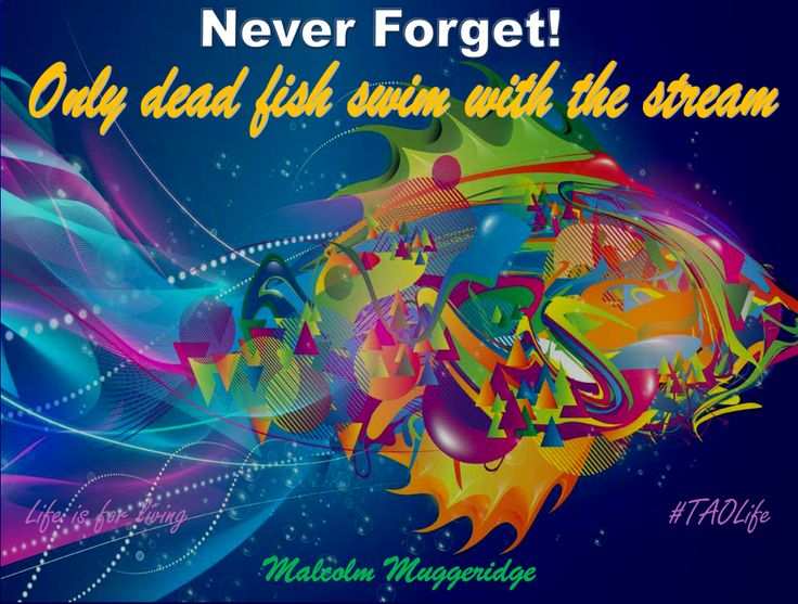 #Poster>>  Never forget! Only dead fish swim with the stream.  Malcolm Muggeridge  #quote #taolife #inspiration #motivation