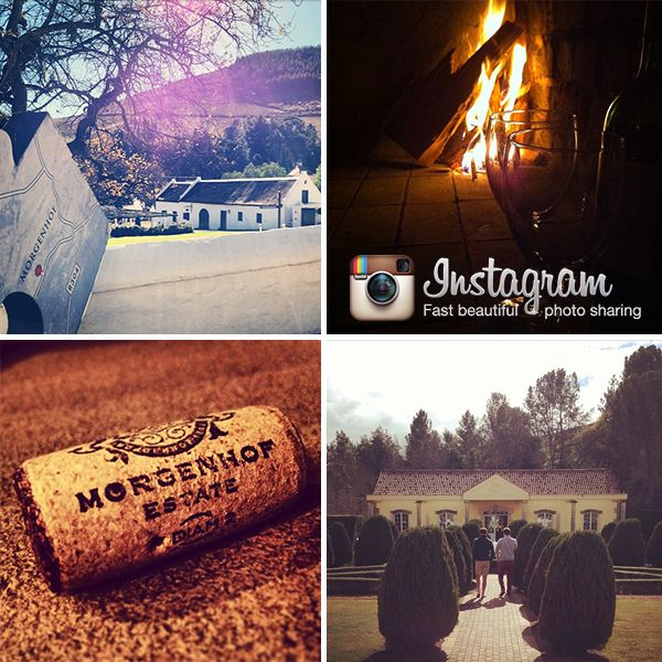 A glass by the fire or a visit to the tasting room, remember to #morgenhof and share your memories with us! Follow us on Instagram - http://ow.ly/AefCj