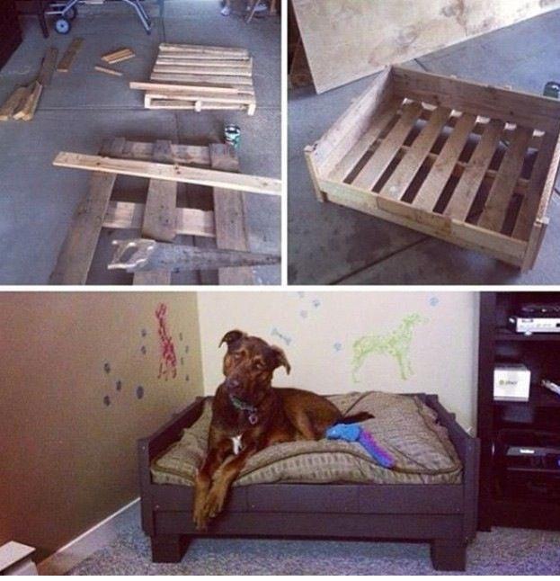 Palette transformer en lit pour chien. Génial!!