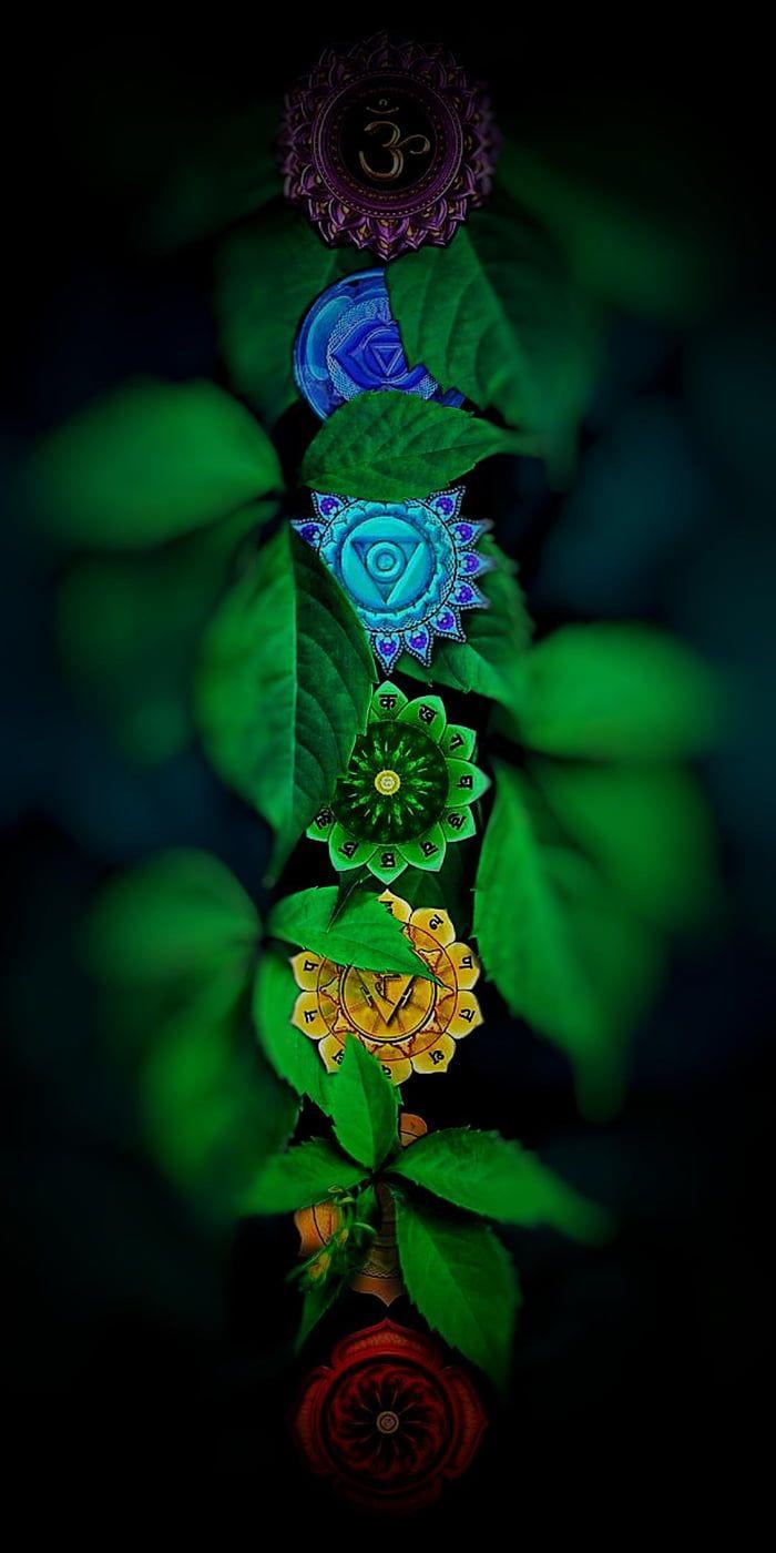Chakras 1080x2160 In 2021 Zen Wallpaper Cool Pictures For Wallpaper Wallpaper Nature Flowers