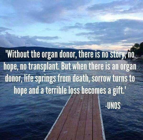 Organ donation, liver transplant