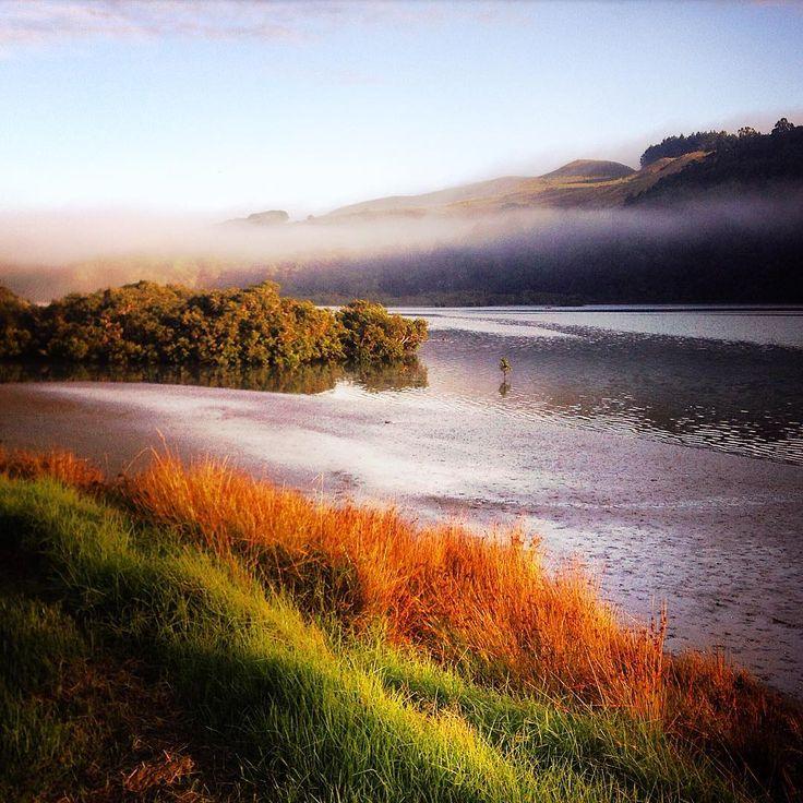 Throwback to a beautiful coastal retreat with friends... . . . #FallColors #Auckland #Aotearoa #NewZealand #NZ #Fall #FallLeaves #NorthAuckland #HibiscusCoast #Tranquil #CoastalLiving #Escape #CoastalRetreat #Wanderlust #Retreat #LuxuryRetreat #AucklandNZ #BeautifulDestinations #PureNZ #DestinationNZ #MadeinNewZealand #CoastalWalk #CoastalHike #FallColours #Autumn #Colorful #Travel #Adventure #Nature #Scenery