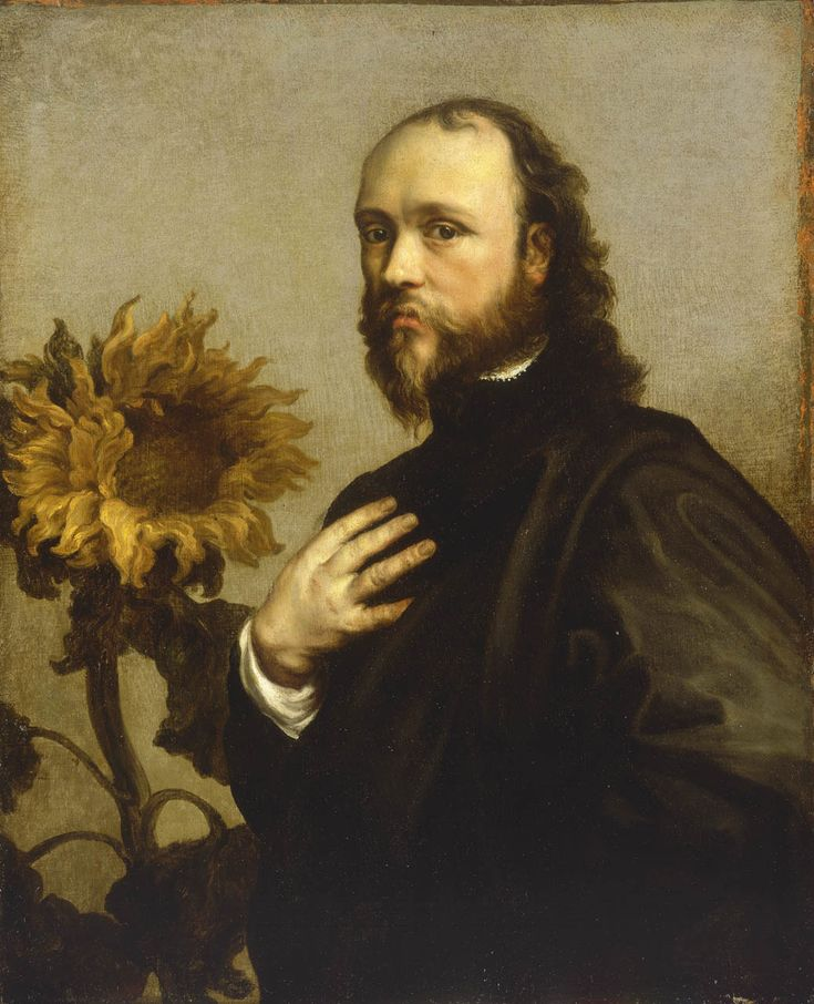 "Sir Kenelm Digby, 1603-65 ~ by Anthony van Dyck... ""The presence of a sunflower on the left is an allegorical symbol indicating his deep loyalty and constancy to the monarch, Charles I.  Digby - whose father was executed for involvement in the Gunpowder Plot of 1605 - was a courtier and author of books on philosophy and natural science; also a naval commander and diplomat."""