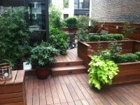 3 main challenges to plantings on a rooftop - NY Roof Top Gardene Designer