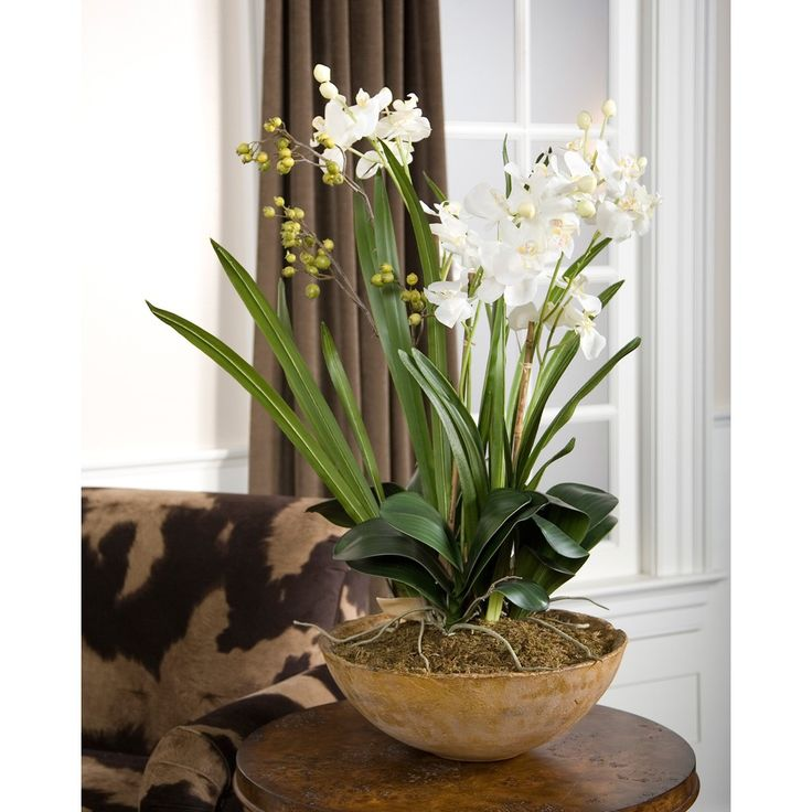 Moth Orchid Planter - Accessories - The Uttermost Company | The Design Network