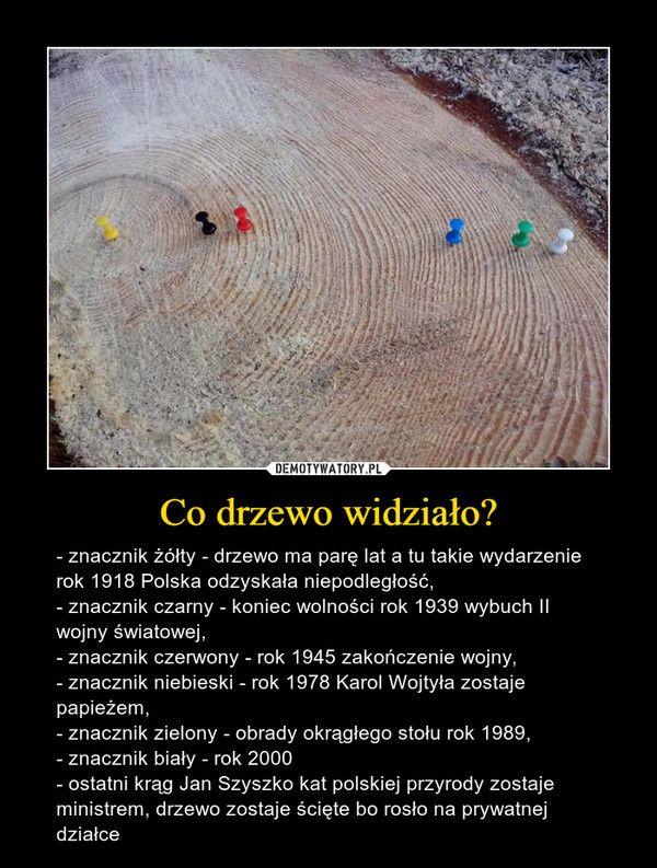 Co drzewo widziało? – - znacznik żółty - drzewo ma parę lat a tu takie wydarzenie rok 1918 Polska odzyskała niepodległość,- znacznik czarny - koniec wolności rok 1939 wybuch II wojny światowej,- znacznik czerwony - rok 1945 zakończenie wojny,- znacznik niebieski - rok 1978 Karol Wojtyła zostaje papieżem,- znacznik zielony - obrady okrągłego stołu rok 1989,- znacznik biały - rok 2000- ostatni krąg Jan Szyszko kat polskiej przyrody zostaje ministrem, drzewo zostaje ścięte bo rosło na prywatnej…