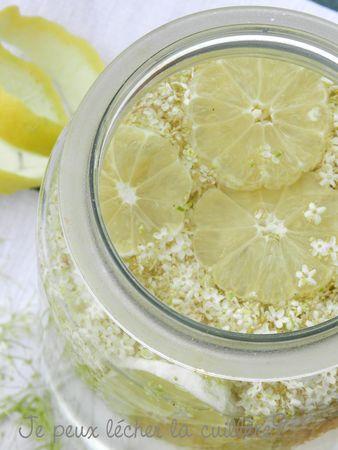 Sureaunade (pétillant de fleurs de sureau)