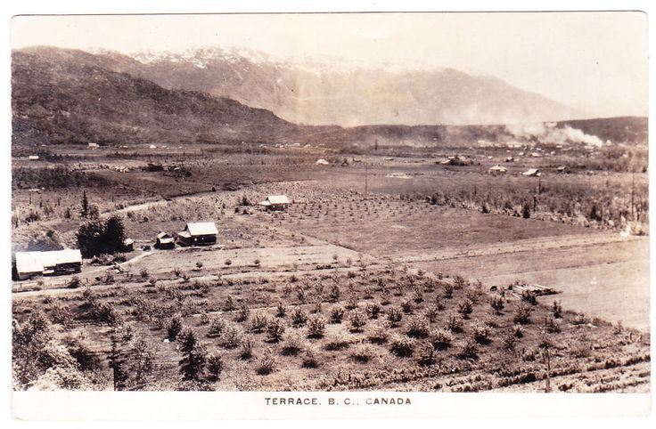 BC – TERRACE, Farming Valley with Orchards c.1943 RPPC