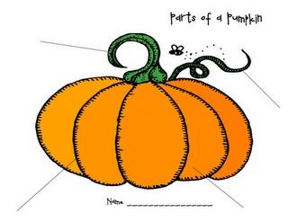 66 best images about pre k pumpkins on pinterest. Black Bedroom Furniture Sets. Home Design Ideas