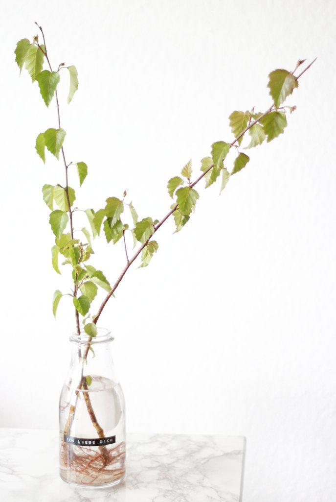 Ein Mini-Maibaum als Wohnungsdeko und Geschenkideen für die Mainacht, Maibaum, DIY, Birkenzweige, Frühlingsdeko, Birch