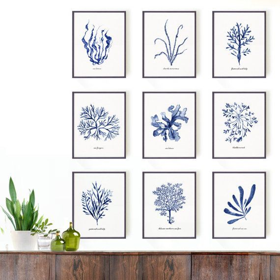 Seaweed watercolor painting, Set of 9 Botanical print set, Blue and white Sea kelp print, Coastal living, Blue decor, Bathroom decor