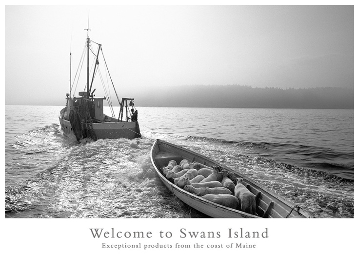 Swans Island, another summer favorite!