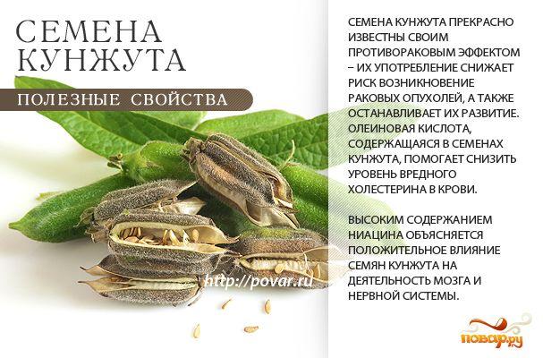 тройчатка из трав от паразитов