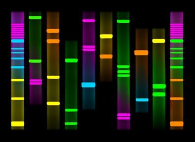 Personal DNA art