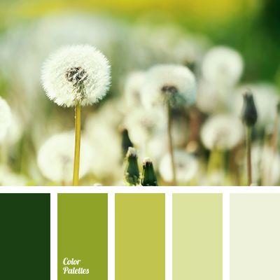 monochrome green color palette