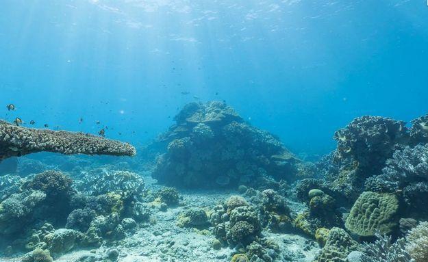Ilha vulcânica Apo, localizada nas Filipinas: http://abr.io/5CYC