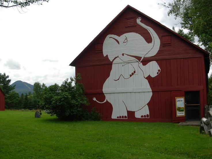 Georgeville's Elephant Barn venue