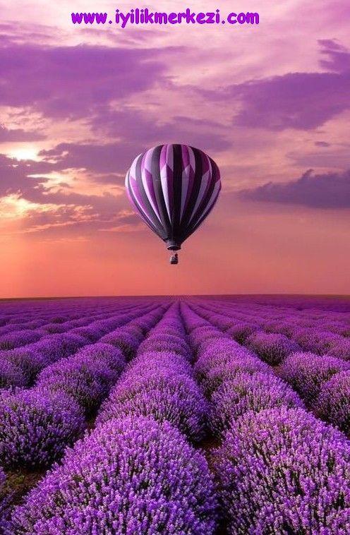 Günün Olumlaması: Hayatın kendisi nefesdir. Her nefes hediyedir , her nefes şifadır. Hayatı da, nefesi de bol bol şükranla alıyor ve cömertce veriyorum. Her nefesde daha da iyileşiyorum... Her şey yolunda ... — Iyilik'te. #herseyyolunda #alliswell #gununolumlamasi #nefes #iyilikte #bybegumkarace