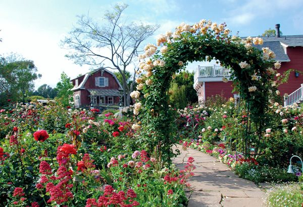 The Rose Garden at Barbra Streisand's dream home where she lives with her husband James Brolin.