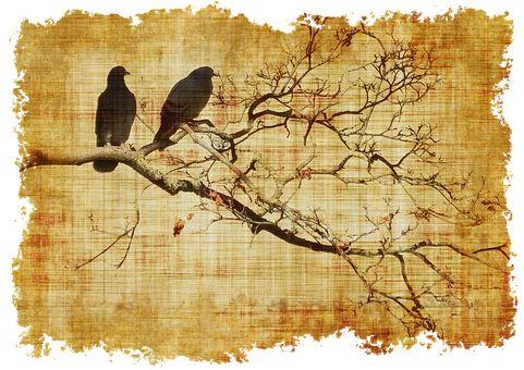 Pergamen, Ptáků, Větev, Poboček