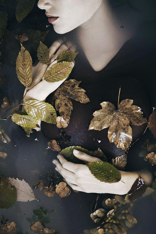 it is autumn in my heart