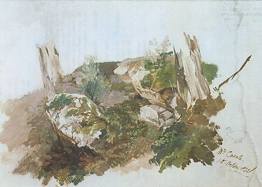 Edward Lear. Study of Rocks, Shrubs, and Tree Trunks at Monte Casale near Sansepolcro, Tuscany 1842