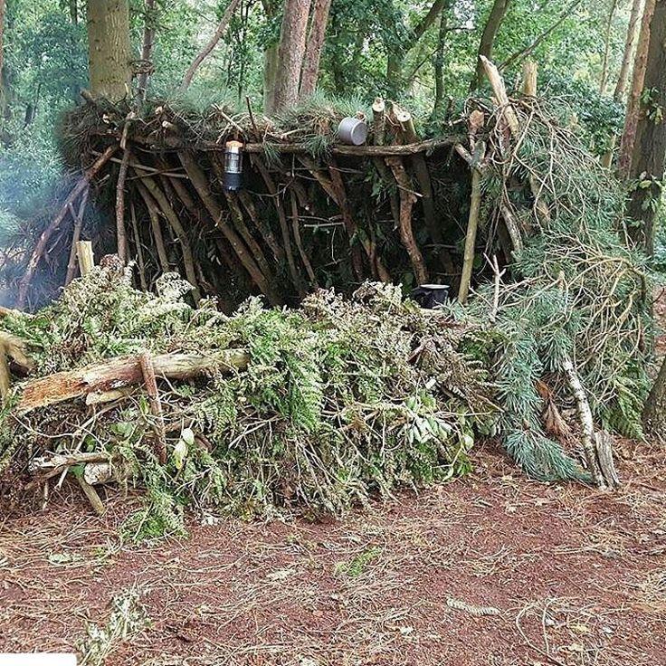 Bushcraft Survival Skills: 436 Best Survival Shelters Images On Pinterest
