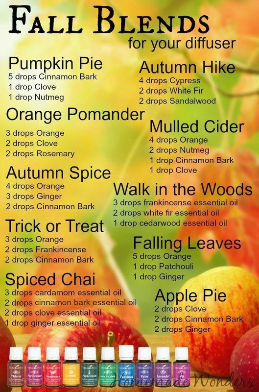 Fall diffuser blends. I love enjoying the smells of fall, without burning toxic candles!