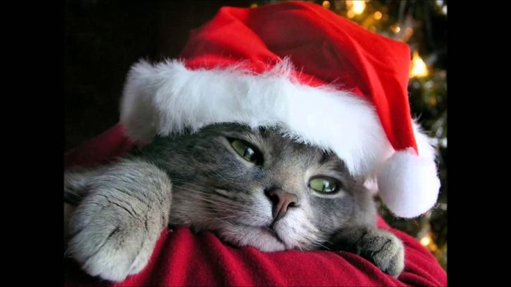 Tommy Seebach - Nu Er Det Jul Igen