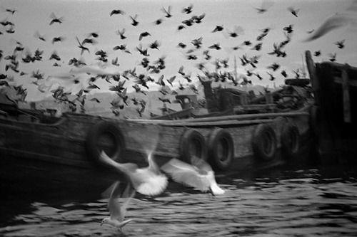Istanbul 1962, Ara Güler