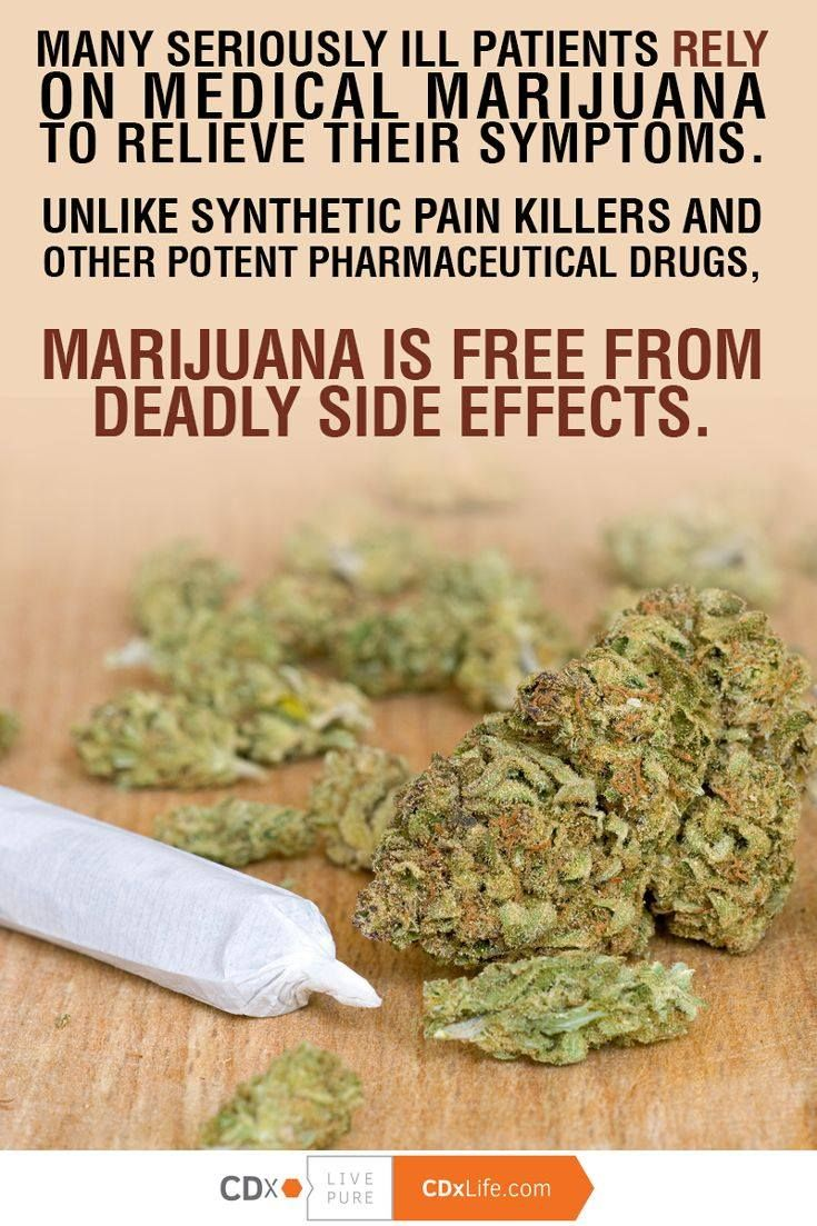 effects of cannabis and hemp What is the difference between cannabis, hemp, and marijuana one of the questions that often comes up is, what is the difference between cannabis, industrial hemp.