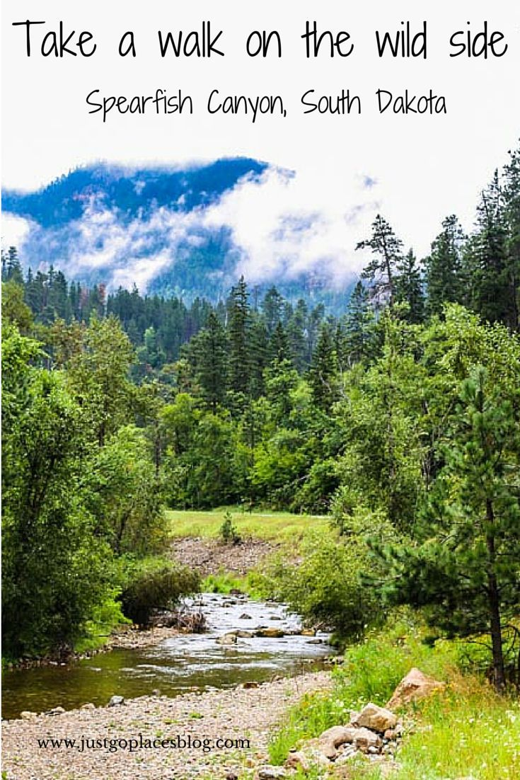 The great outdoors austin congress - Spearfish Canyon In South Dakota