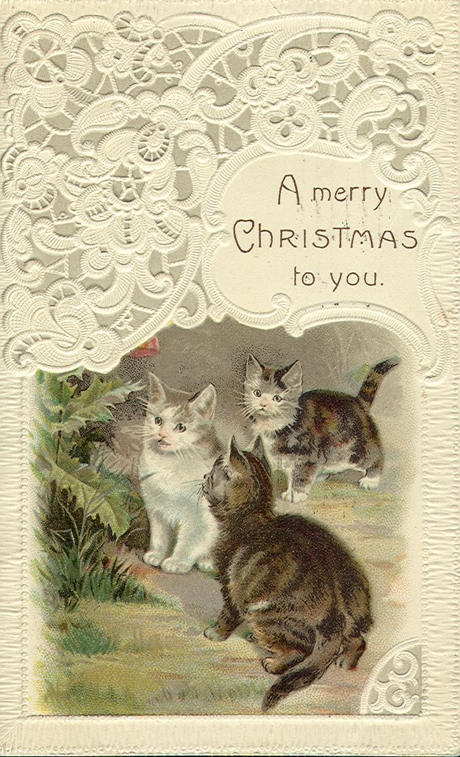 Vintage Christmas greeting...cats
