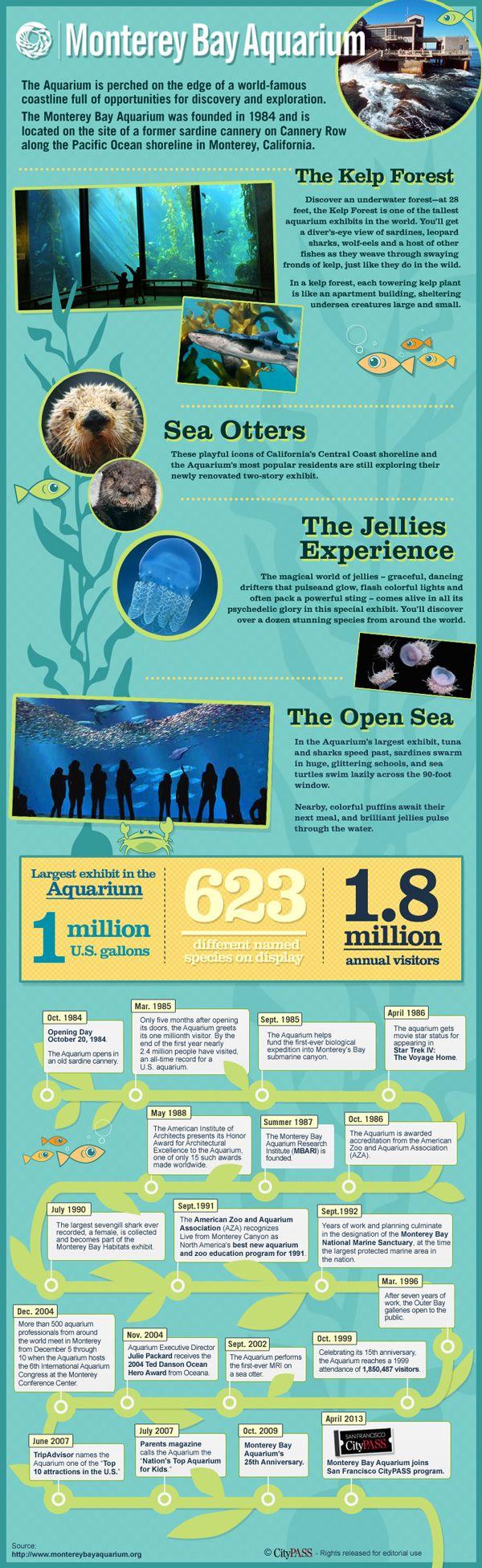 City Traveler Blog: Monterey Bay Aquarium, Newest CityPASS Attraction