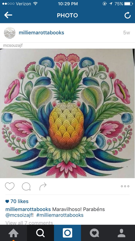 344 Best Millie Marotta Images On Pinterest