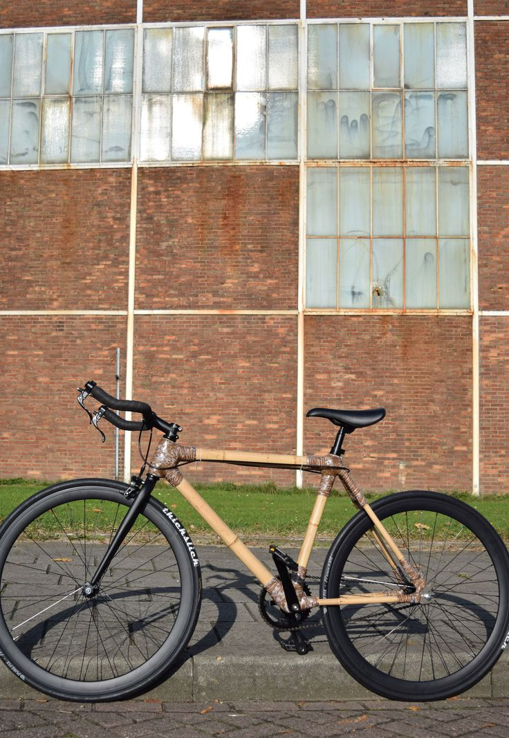 My first Bamboo Bike