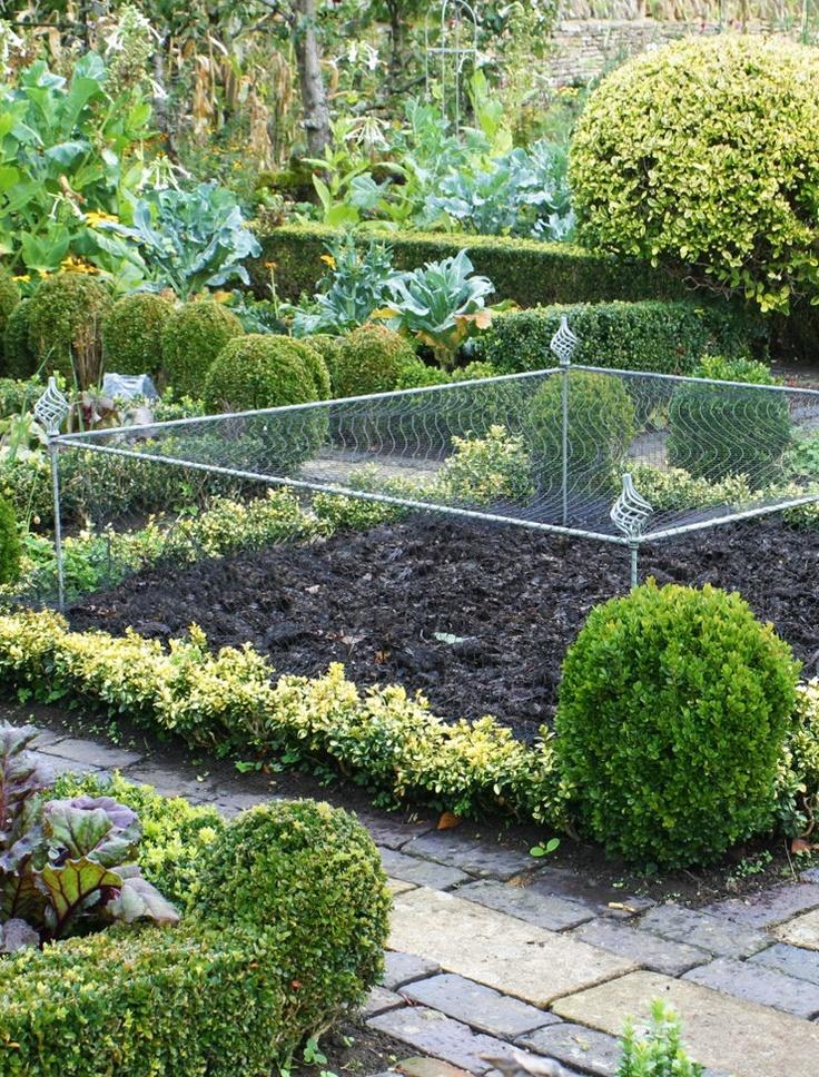 Elegance Crop Cage