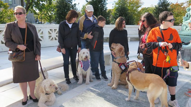 Service Dog Case Draws Skepticism From Both Sides At The Supreme Court