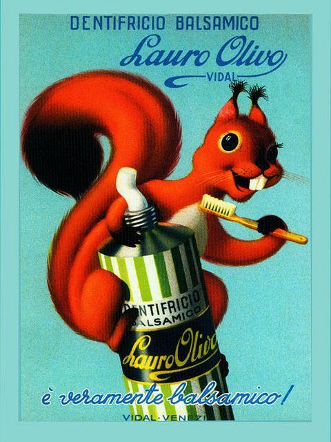 Vintage Italian Posters ~ #illustrator #Italian #posters ~ Italian Toothpaste for Squirrels