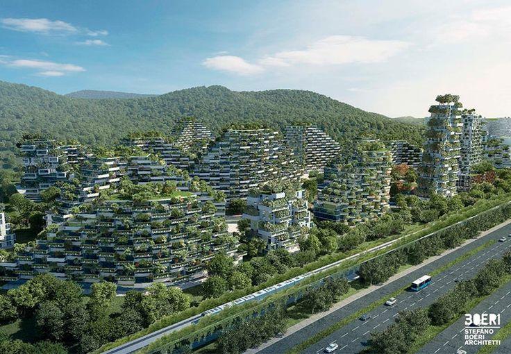 China bouwt 's werelds eerste bosstad. De stad krijgt een oppervlakte van circa 1,75 vierkante kilometer en is daarmee bijna vier keer zo groot als het Vaticaan.