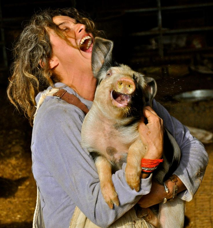 Happiness .. even the pig is laughing