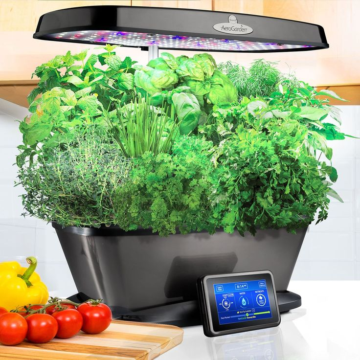 MiracleGro AeroGarden Bounty Elite with Gourmet Herb Seed