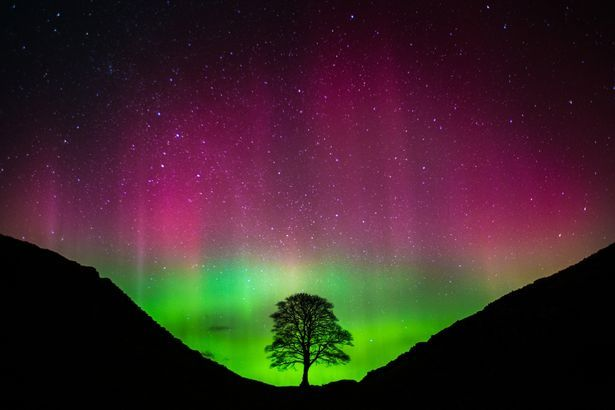 photo of the northern lights from 3/7/2016 in sycamore gap | The Aurora Borealis at Sycamore Gap in Northumberland on March 7, 2016 ...