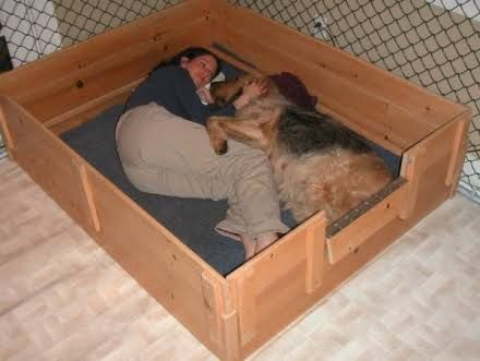 1000 Ideas About Whelping Box On Pinterest Dog Kennels