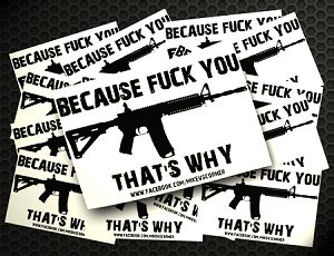 BECAUSE FUCK YOUR 3X4 STICKERS www.southsixx.com freelance model #guns #2ndamendment #shirts #model #goth #tattoo #babewithguns #countrygirl #tomboy #foxgirl #harleygirl #pretty #AR #springfield #.45 #tacticalmodel #tactical #outdoors #sexy #gothic #american #tshirt #gear #wear #clothes #chickwithgun #skull #tattoosandguns #modeling #shop #shopping
