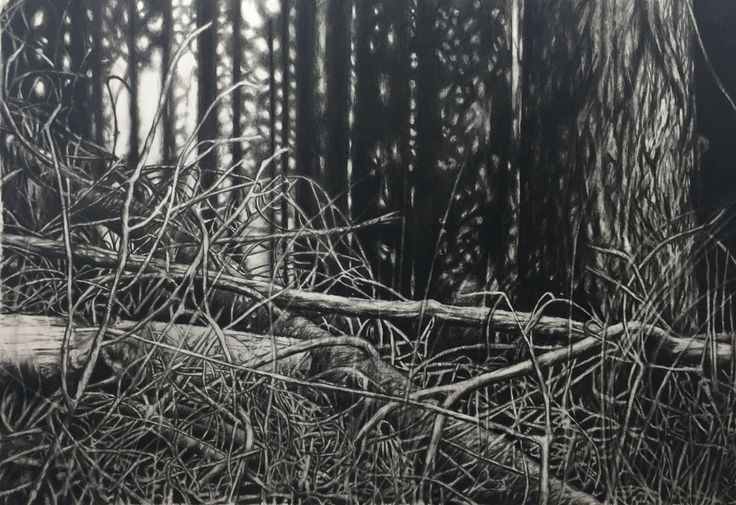 Charcoal and pencil, by Gry Hege Rinaldo.