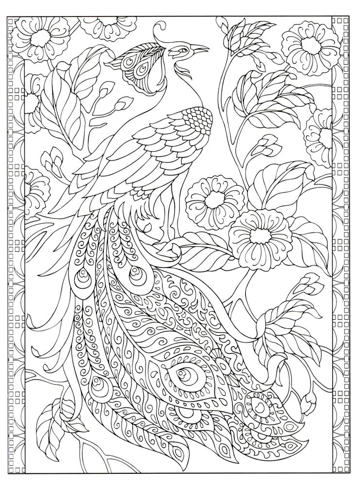 fliss coloring pages - photo#5