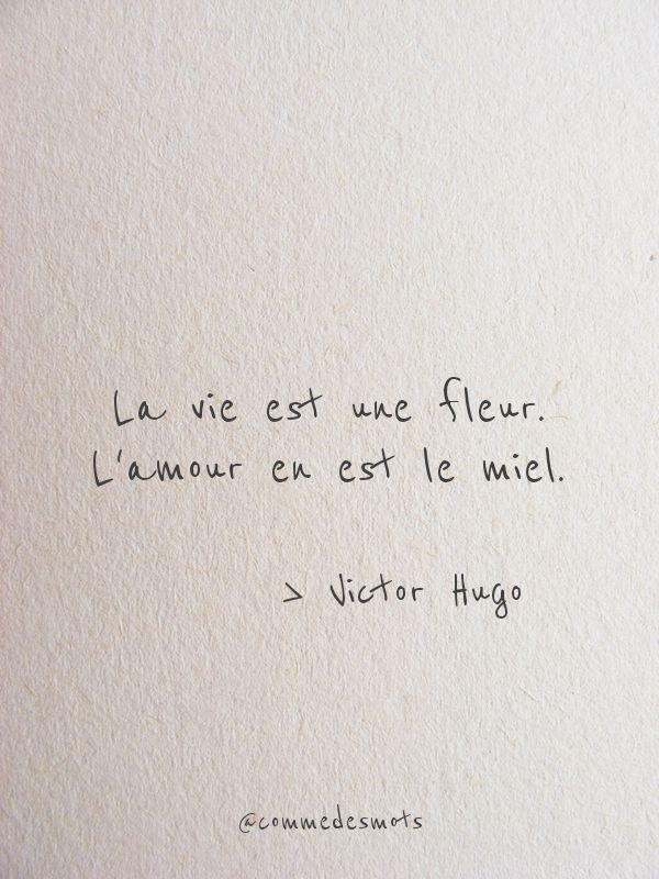 La Vie Est Une Fleur Phrase Citation Belles Citations Et