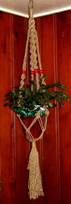 The macrame plant hanger and wood paneling.